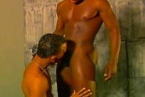 Black boy sucking off cock